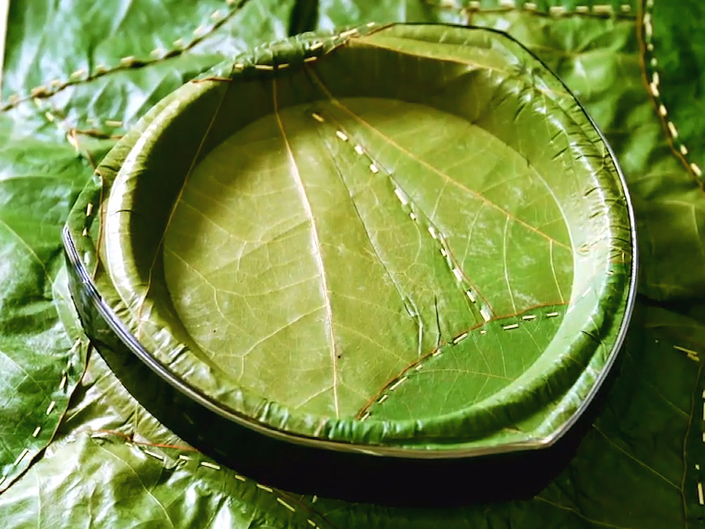 a-german-company-is-making-plates-out-of-fresh-green-leaves.jpg