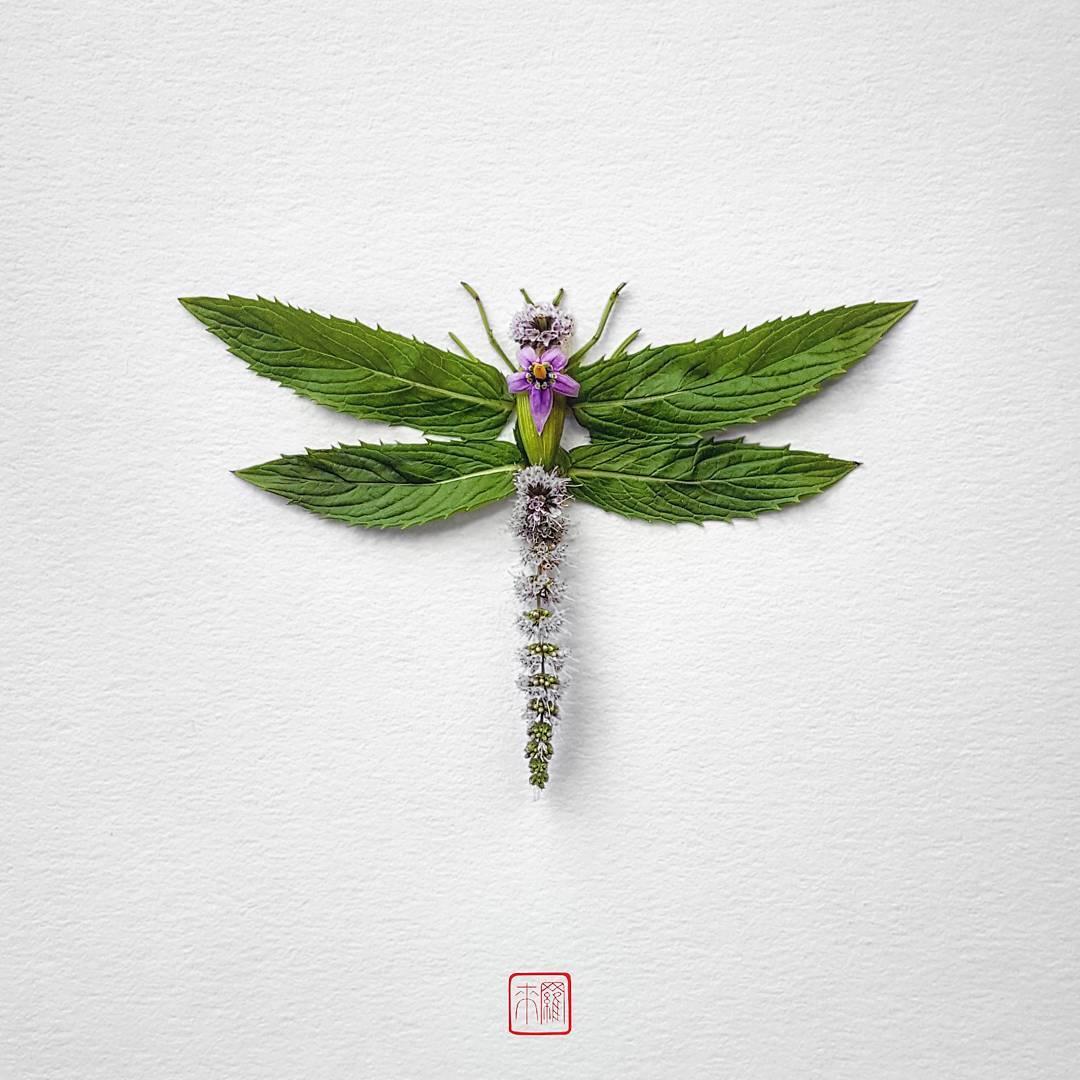 natura-4.jpg