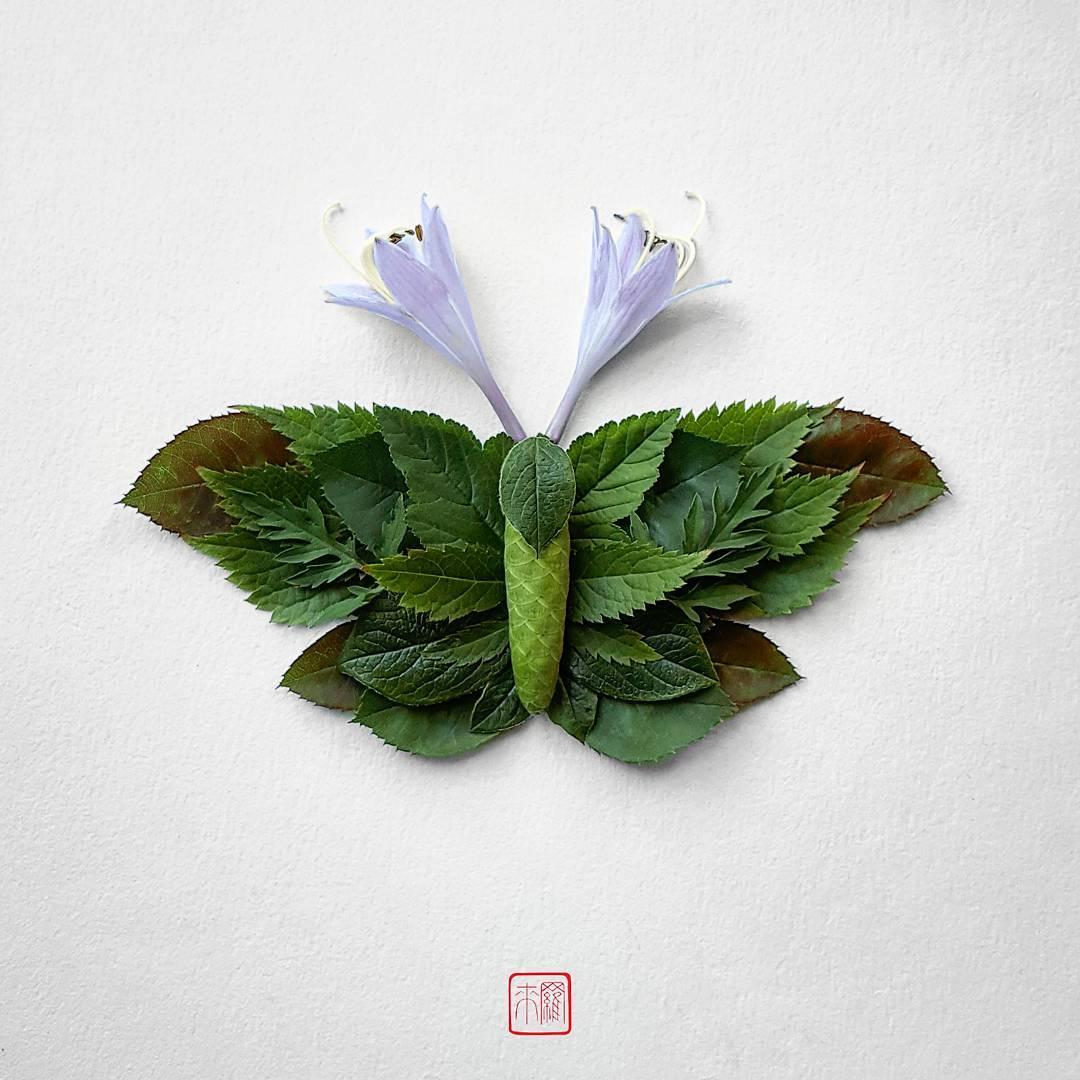 natura-6.jpg