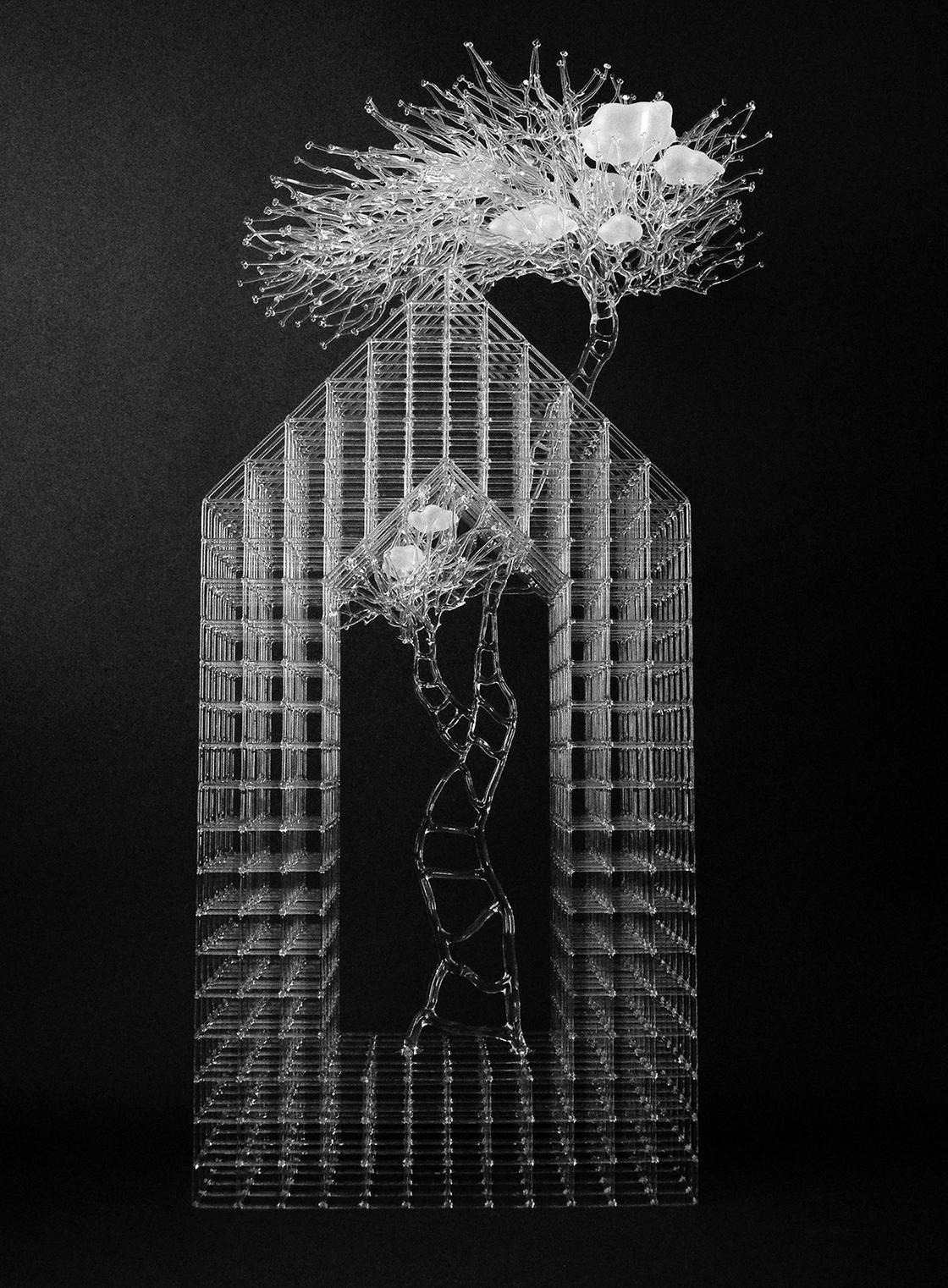 eunsuh-choi-glass-sculptures-6.jpg