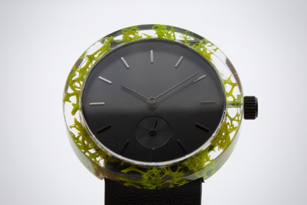 botanist_watch_11.jpg
