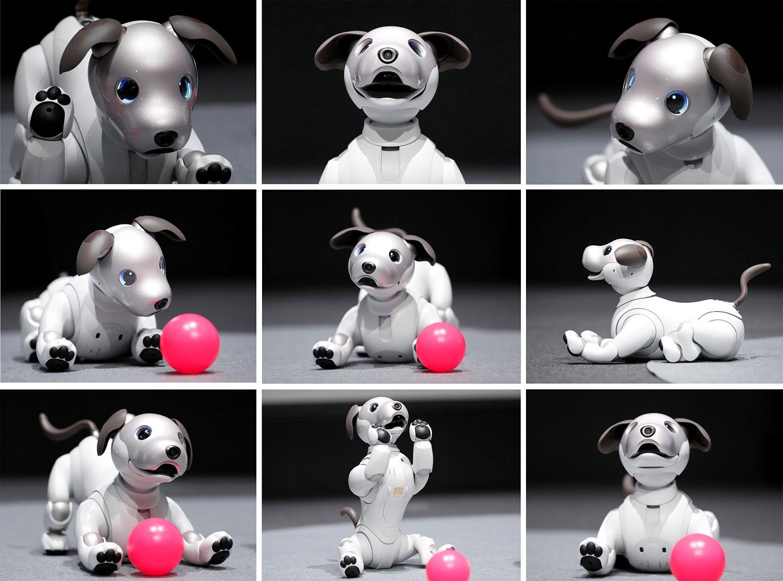 robot_dogs.jpg
