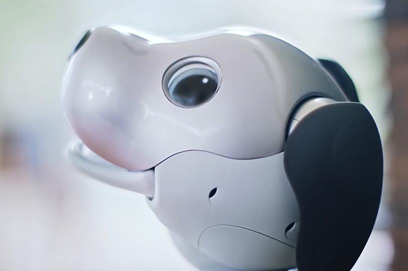 sony-aibo-robot-dog-designboom-03-1.jpg