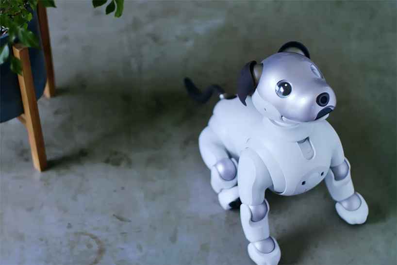 sony-aibo-robot-dog-designboom-04.jpg