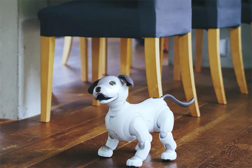 sony-aibo-robot-dog-designboom-05.jpg