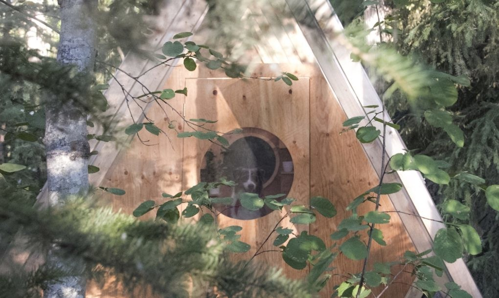 birdhut-by-studio-north-3-1020x610.jpg