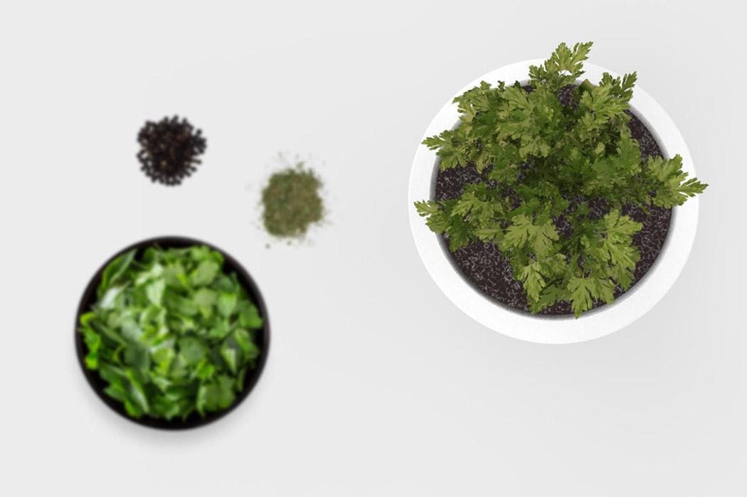 botavo-plant-light-noko-04.jpg