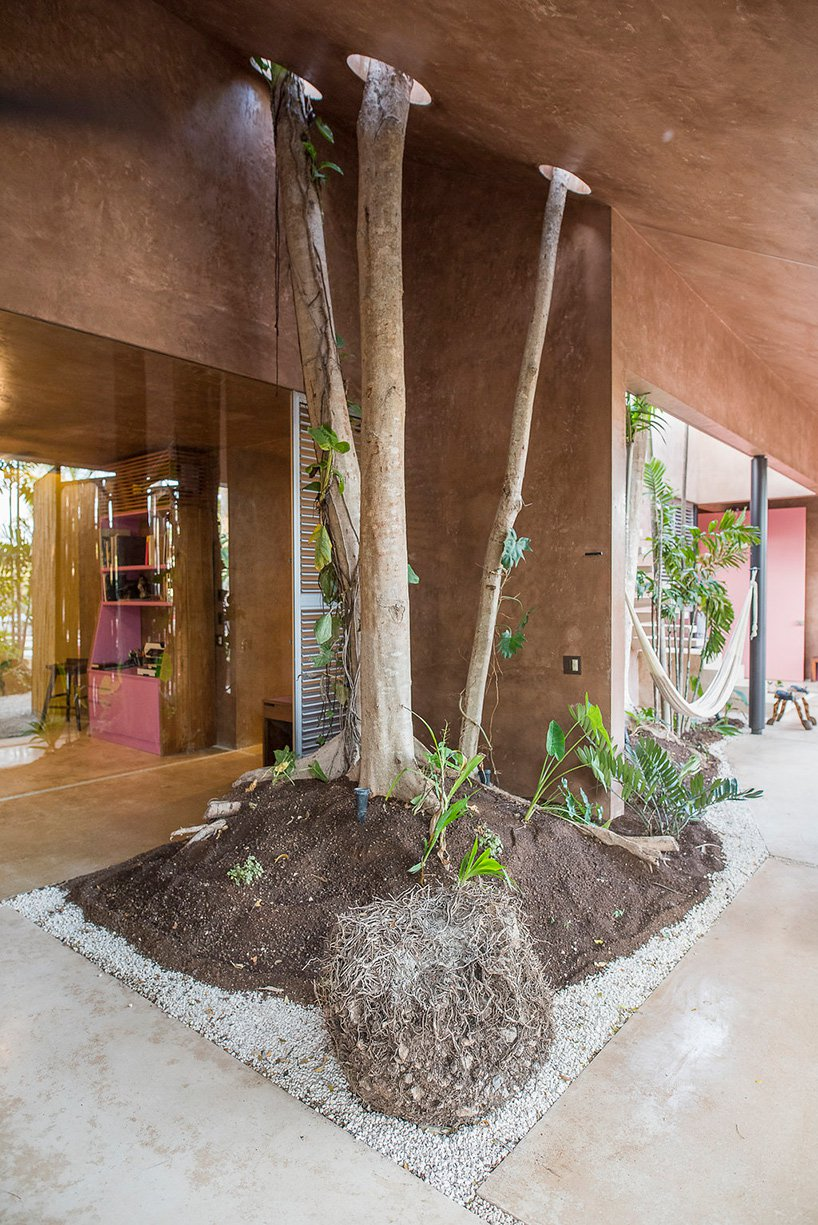 taller-de-arquitectura-contextual-taco-portico-palmeto-noko-07.jpg