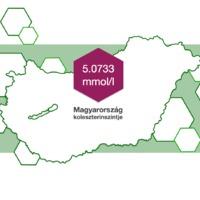A Flora ProActiv megbízásából megmértük Magyarország koleszterinszintjét!