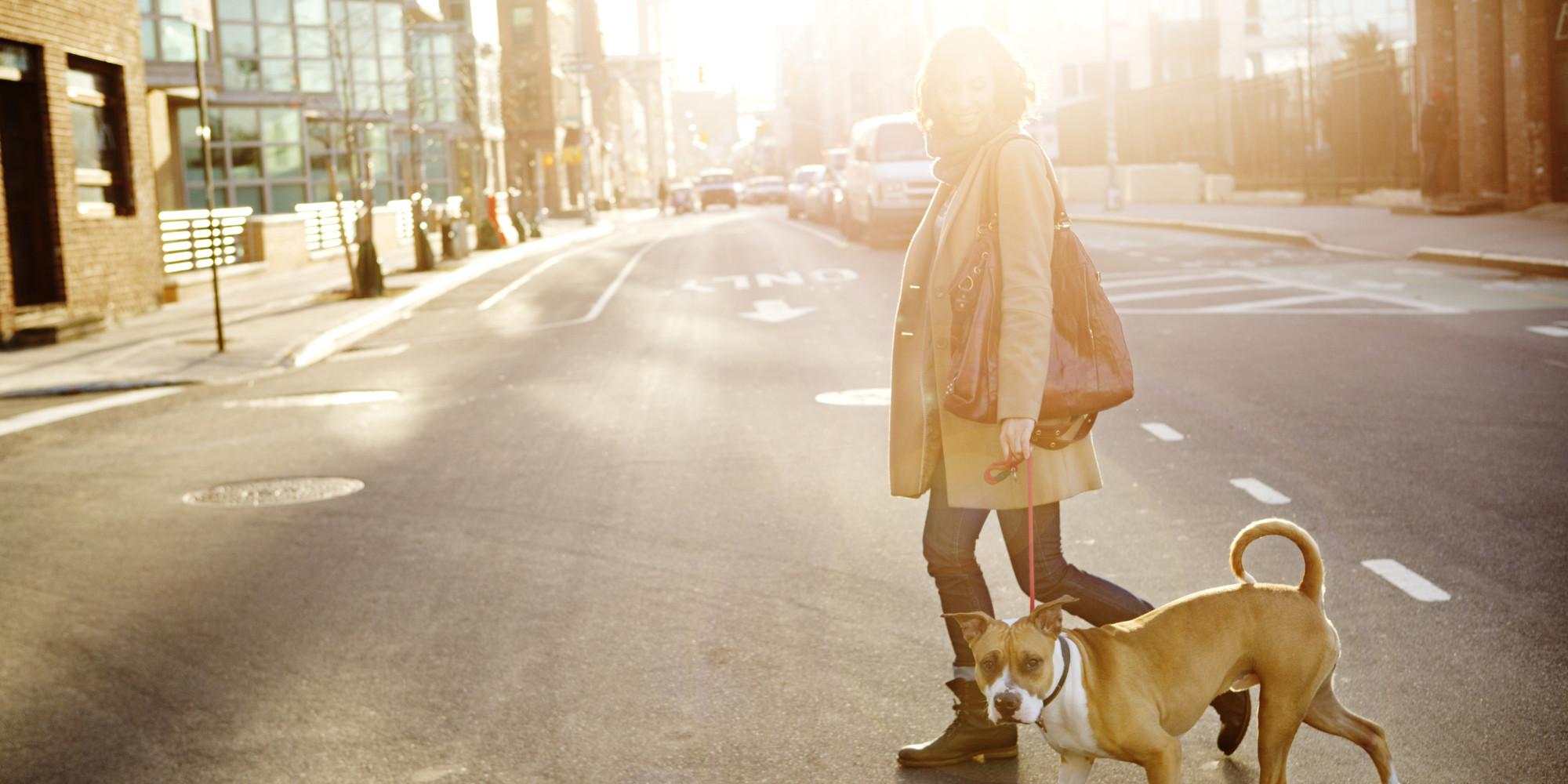 o-walking-dog-facebook.jpg