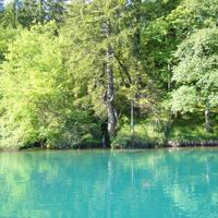 A víz gyönyörű zöldeskék