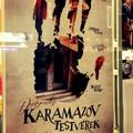 A Karamazov fiúk