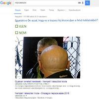 A Google-népszavazás