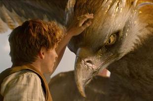 Már a mozikban a Legendás állatok és megfigyelésük