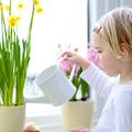 Négy tipp a lakás tavaszi megújulásáért