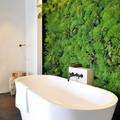 Lenyűgöző fürdőszobák a nagyvilágból