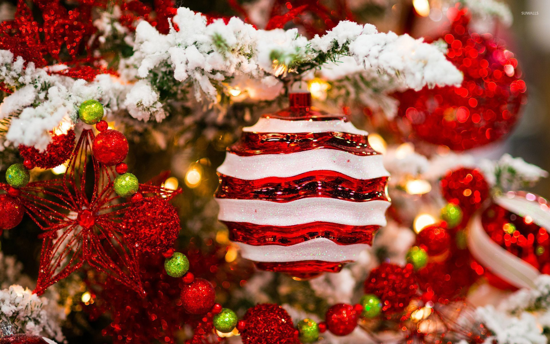 red-and-white-decorations-in-the-snowy-christmas-tree-52001-1920x1200.jpg