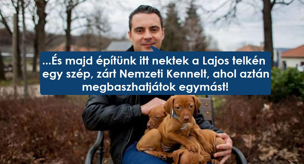 kennel.jpg