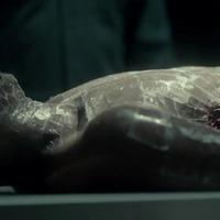 Fűszeres holttestet találtak Zsitvabesenyőn