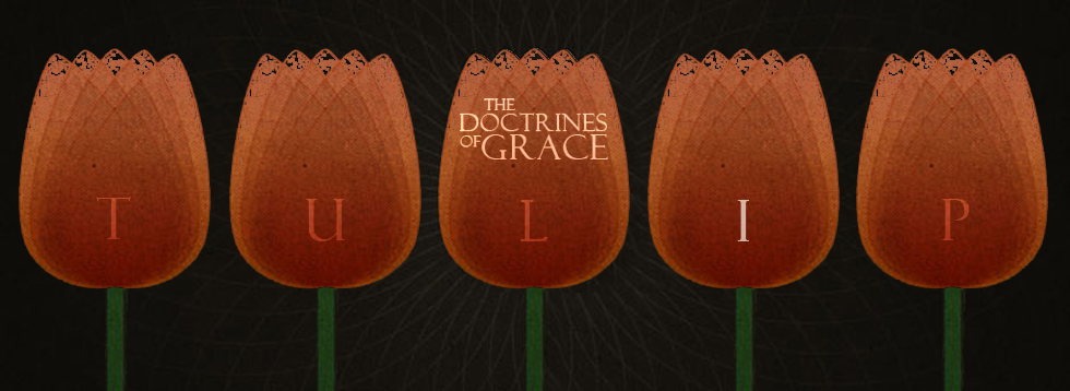 doctrines-of-grace-i.jpg