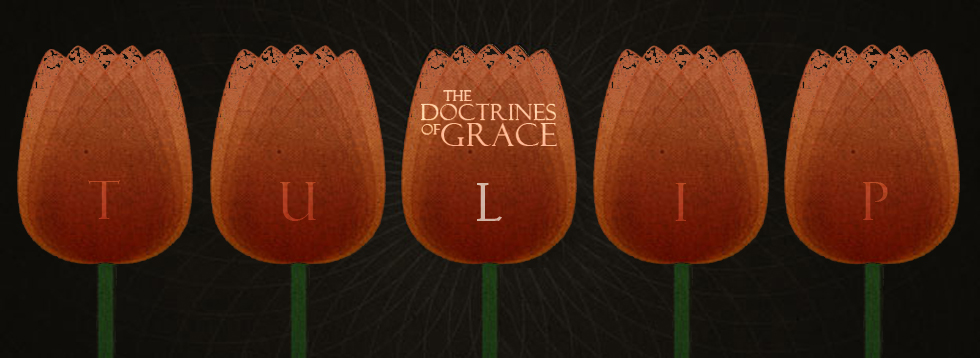 doctrines-of-grace-l.jpg