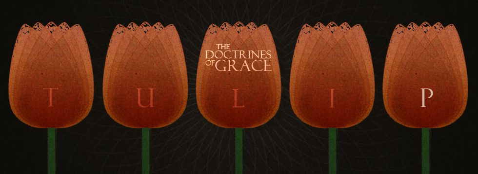 doctrines-of-grace-p.jpg