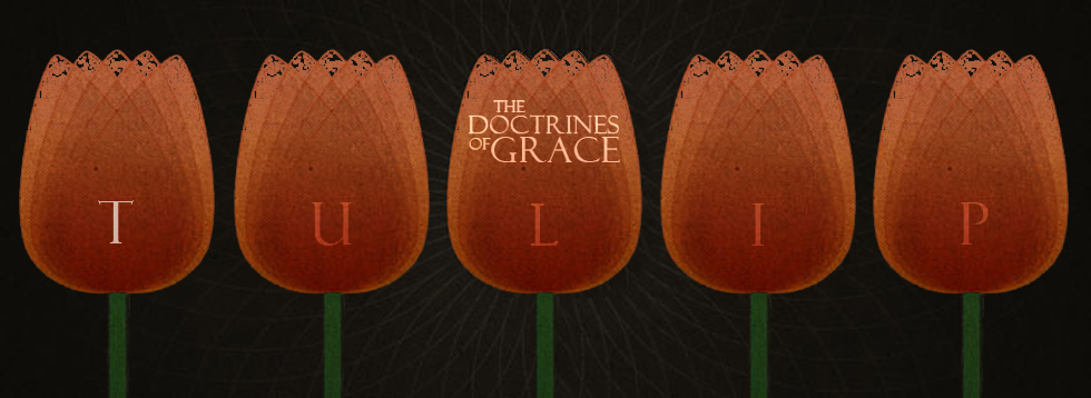 doctrines-of-grace-t.jpg