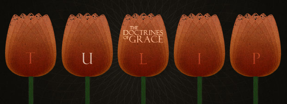 doctrines-of-grace-u_1.jpg