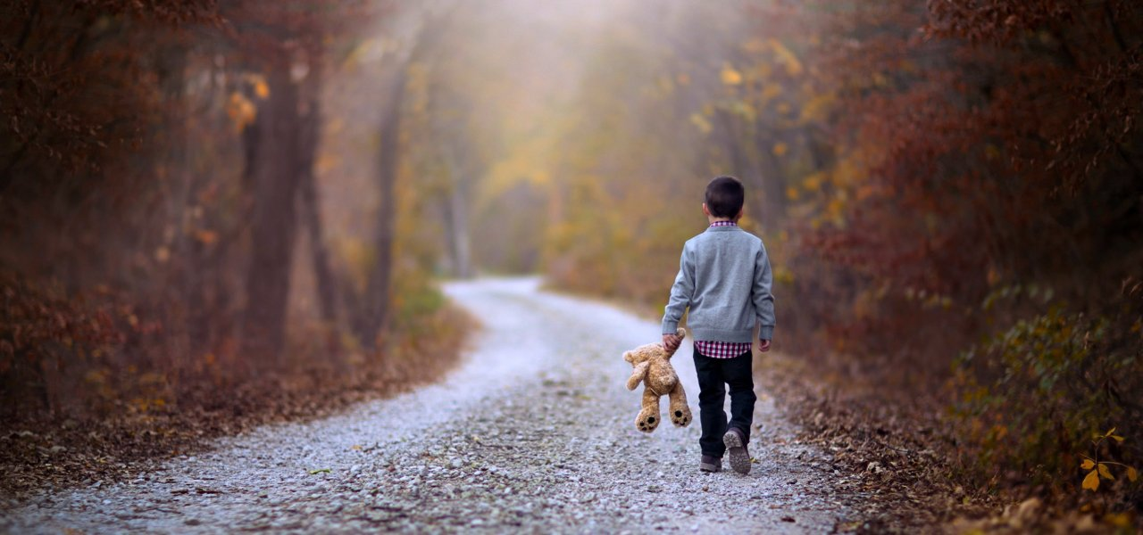 kids_children_childhood_teddy_bear_road_way_path_walking_alone_lonely_forest_jungle_landscapes_nature_earth_1280x600.jpg