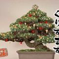 Japán, Karácsony és a KFC