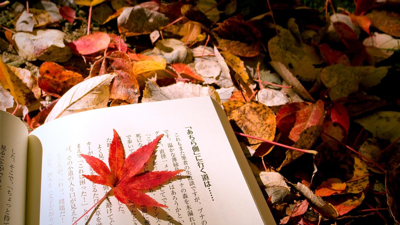 autumn-leaves-japanese-book_1366x768.jpg
