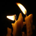 Gyász - két fontos és hasznos új honlap