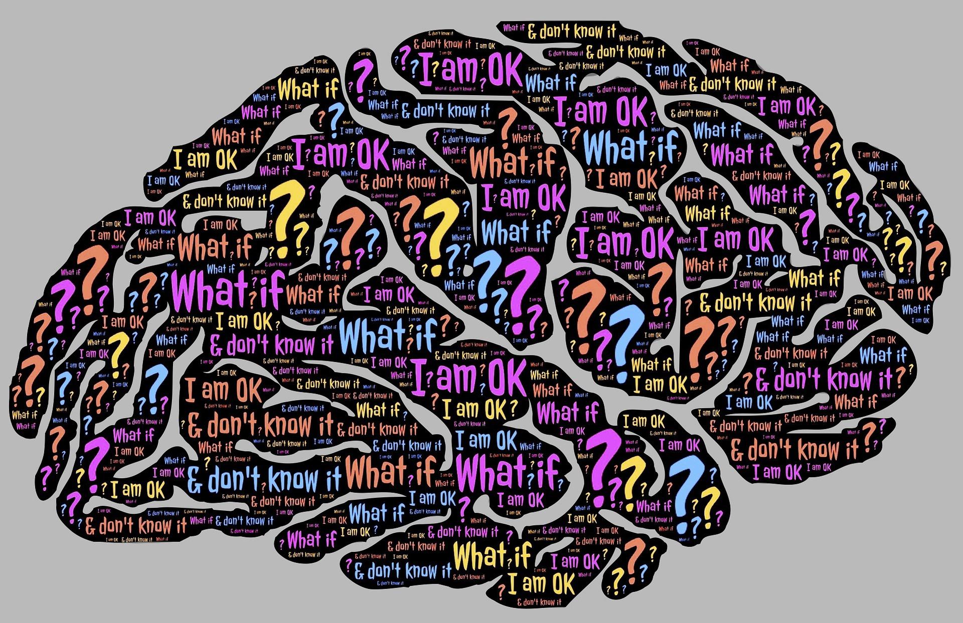 brain-962588_1920.jpg