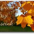 Kedvenc őszi verseink