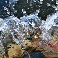 Tisza-tó, november – Kell ez nekünk?