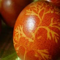Emberbarát tojásfesték, avagy mivel lehet jól tojást festeni?