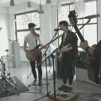 Videopremier! The Bluebay Foxes: Live Session