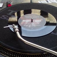 Szelek szárnyán több irányba - Ricardo Piedra remix EP premier