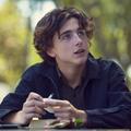 Filmrecorder. A fiú, akiből színészisten lesz – Timothée Chalamet-portré