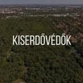 Négysávos autóutat terveznek a Kiserdőbe: most Kispesten készülnek fapusztításra