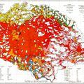 Tömegesen vándorolnak el a magyarok Kárpátaljáról és a Vajdaságból