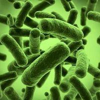 Vigyázat: kórházaink egészségre veszélyes összetevőket tartalmaznak