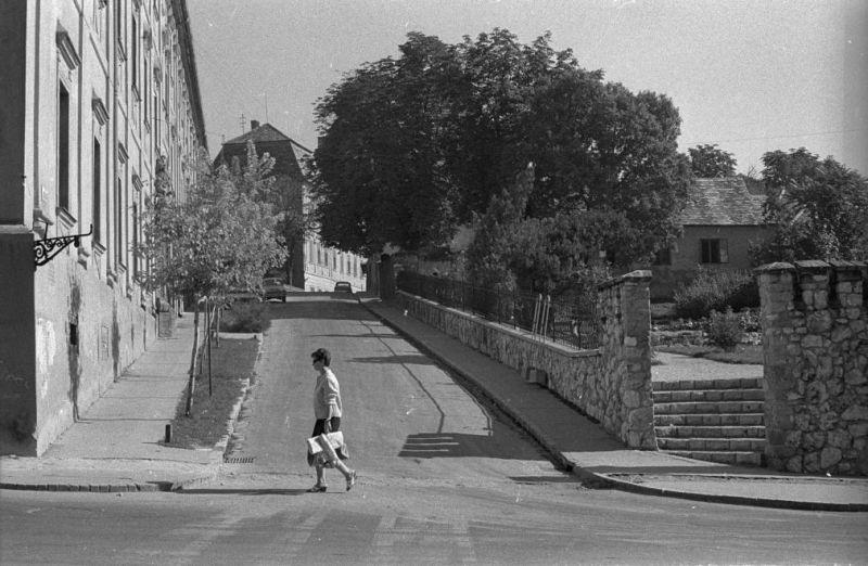 kep_03_papanovelde_utca_kulich_gyula_1960-as_evekben.jpg