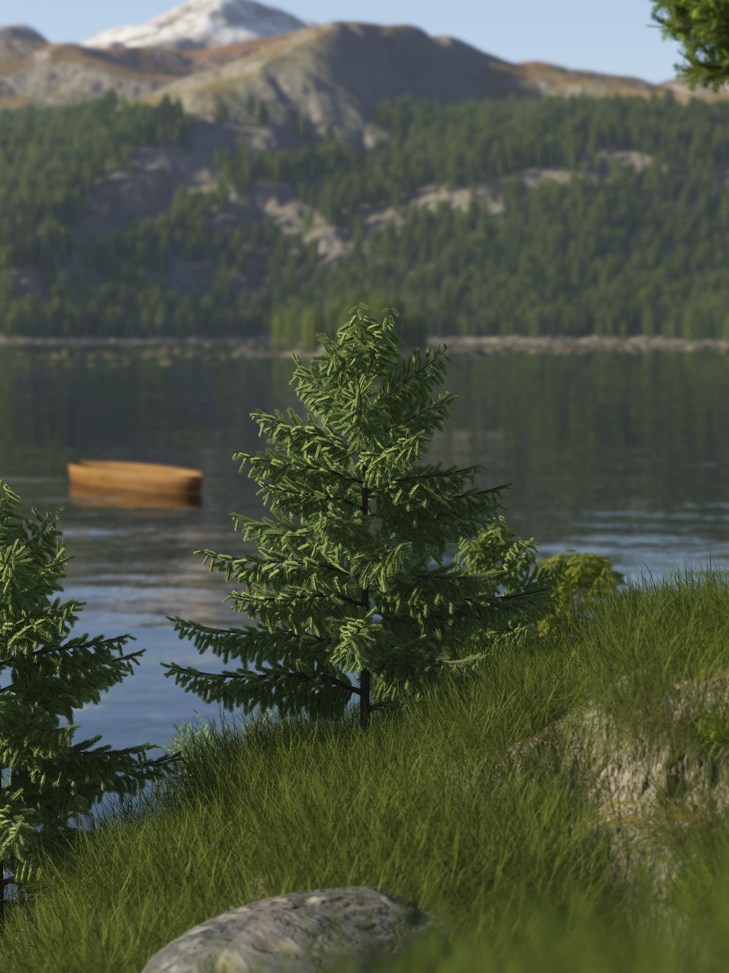 lake_dof_final_1385288828.jpg_1500x2000