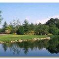 Írország nevezetességei - J. F. Kennedy Park