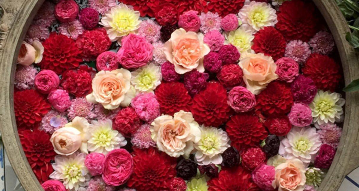 Csodaszép úszó virágdísz az esküvőre - Pár mozdulattal te is elkészítheted