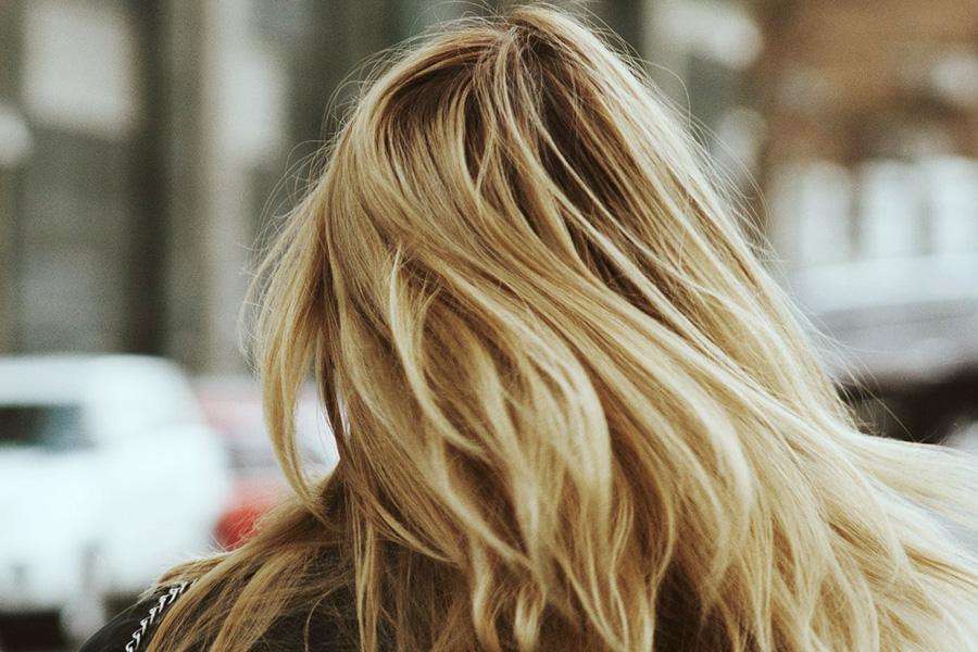 haj-szarazsampon-kicsi.jpg