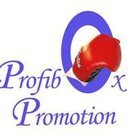 Visszatekintés a budapesti Profibox-Promotion gálára