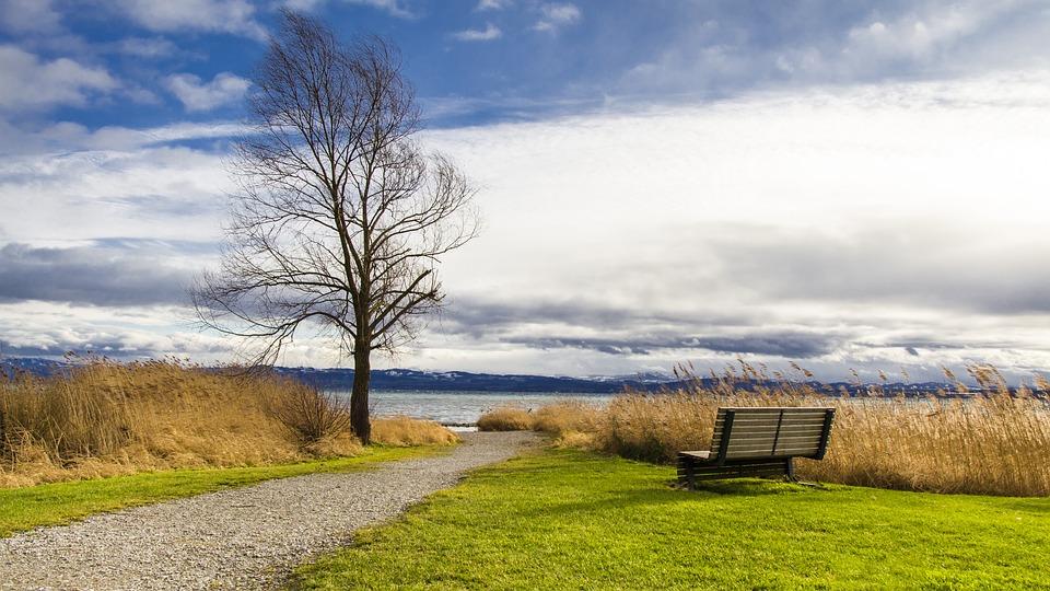 lake-720.jpg