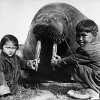 Inuitok a huszadik század fordulóján